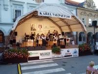 Festival Karel Valdauf 2011 v Trhových Svinech