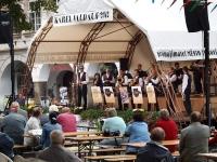 festival Karel Valdauf 2012 Trhové Sviny